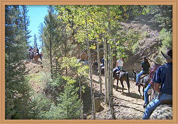 Red River Stables » Trail Rides